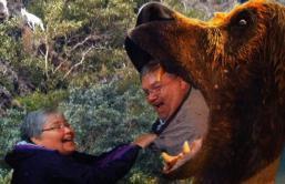 jj bear alaska