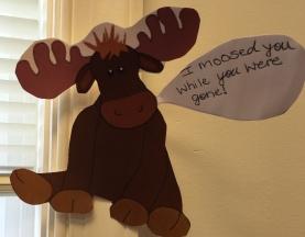Missed Moose