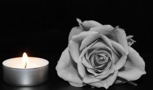rose-1273740_1280
