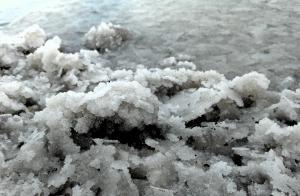 salt-19016_1920