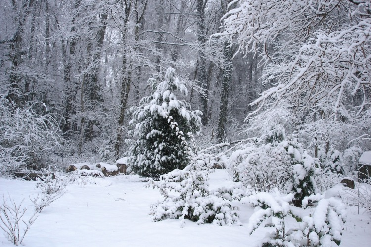 snow-1132489_1920