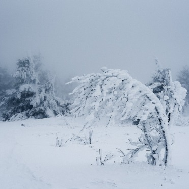 snow-3241250_1280